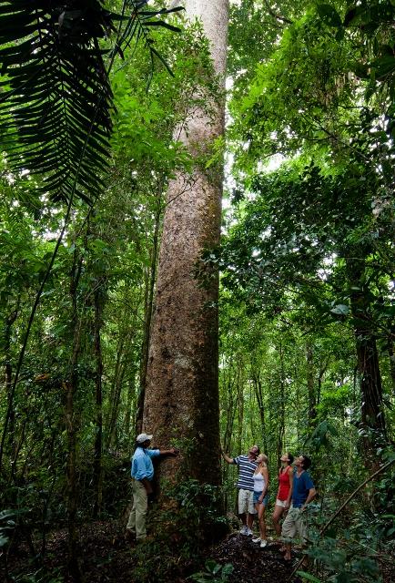 Ngadiku Dreamtime Walks at Mossman Gorge from Cairns