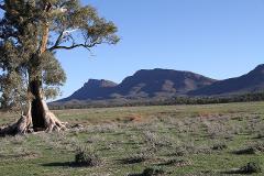 FNPW Anniversary Flinders Ranges Tour