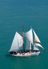 Day Sail Snorkelling & Whitehaven Beach