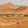 Desert Explorer  North 2018 South Africa