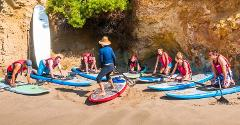 La Vida Laguna Beach Paddle Board Lesson and Tours