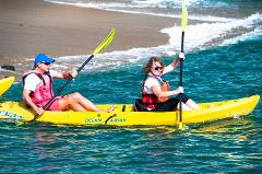 La Vida Laguna Ocean Kayak Tour + Wild Life Viewing