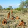 Okavango and Chobe Trail North 2018 South Africa
