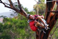 Maui Zipline Canopy Tour by NorthShore