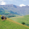 Lesotho And Garden Route  South 2018  South Africa