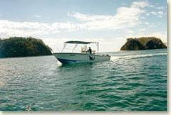 Ocean Fishing Tours