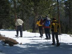 Lake Tahoe Guided Snowshoeing Tours