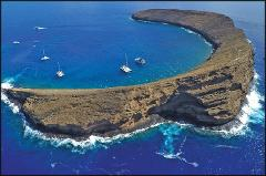 Molokini Crater Snorkel Experience