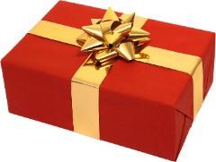 Gift Certificate - VIP EXPERIENCE