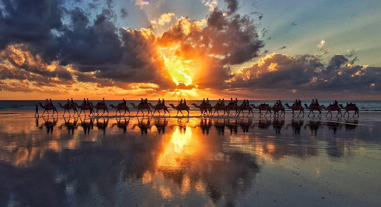 Sensational Sunset Camel Tour, Cable Beach Broome