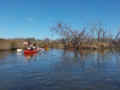 Swan River Paddle Pass