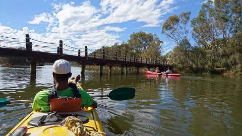 Swan River Half Day Tour