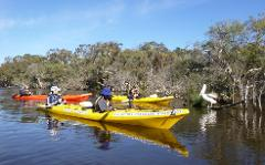 Canning River Half Day Tour