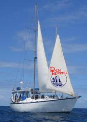 2 Day 1 Night Great Barrier Reef Live-aboard Tour - Certified Diver Trip - 6 dives.