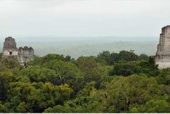 TIKAL TOUR FROM ANTIGUA GUATEMALA