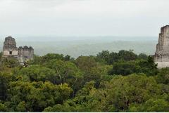 TIKAL TOUR FROM GUATEMALA CITY