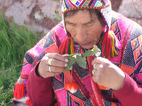 14 Day Sacred Valley Retreat