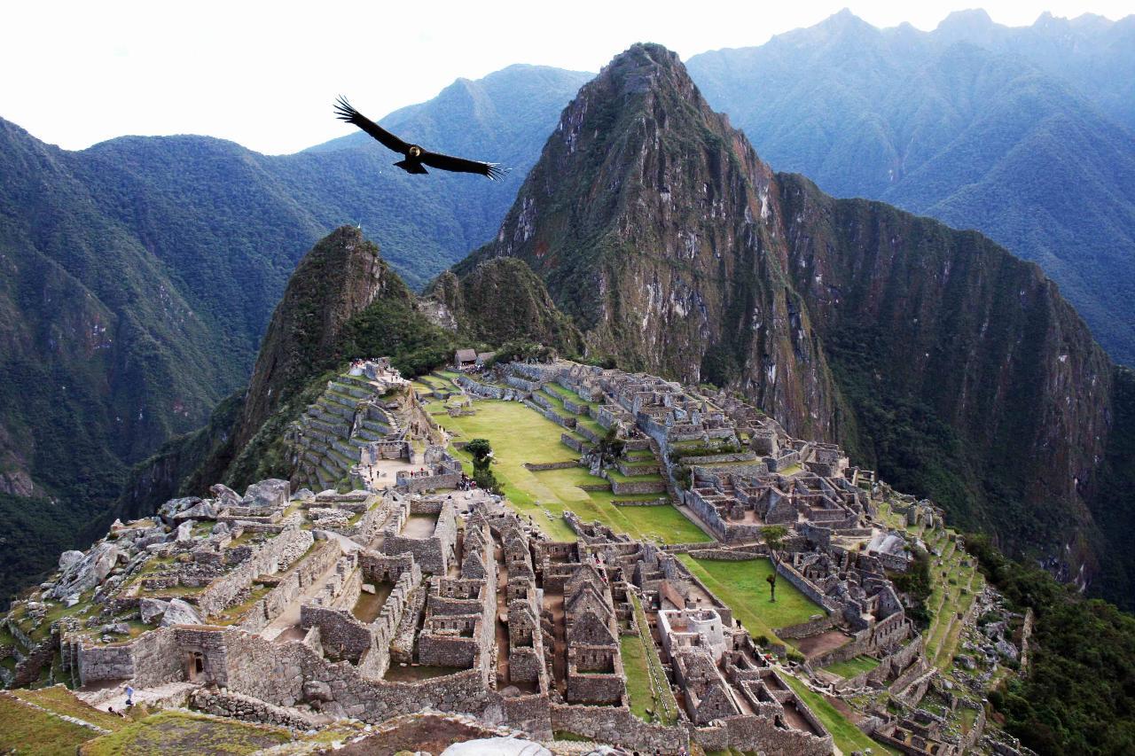 14 Day Machu Picchu to Amazon Ayahuasca Expedition Cusco, Peru (CUZ) to Iquitos, Peru (IQT)
