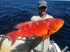 1/2 Day Offshore Fishing Charter - Max 10 passengers per charter only due to social distancing rules.