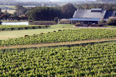 Hunter Valley Wine Tasting Private Tour