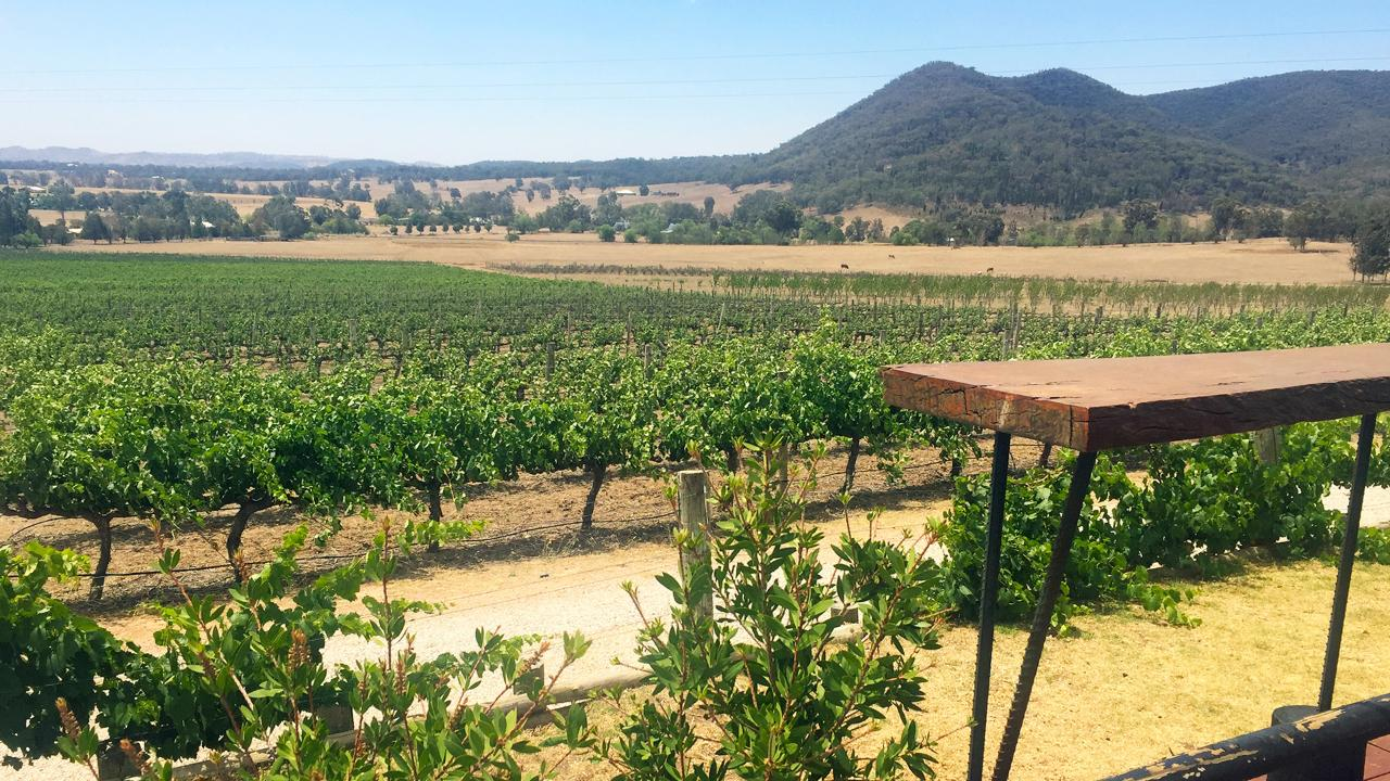 Mudgee 2 Day Tour from Sydney