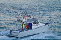 1/2 Day Reef Fishing Charter Private Playstation Max 8 pax