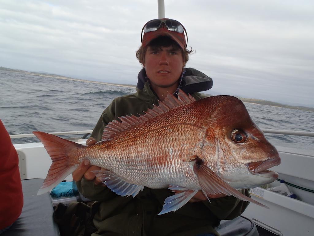 1/2 day  Morning Reef Fishing Charter