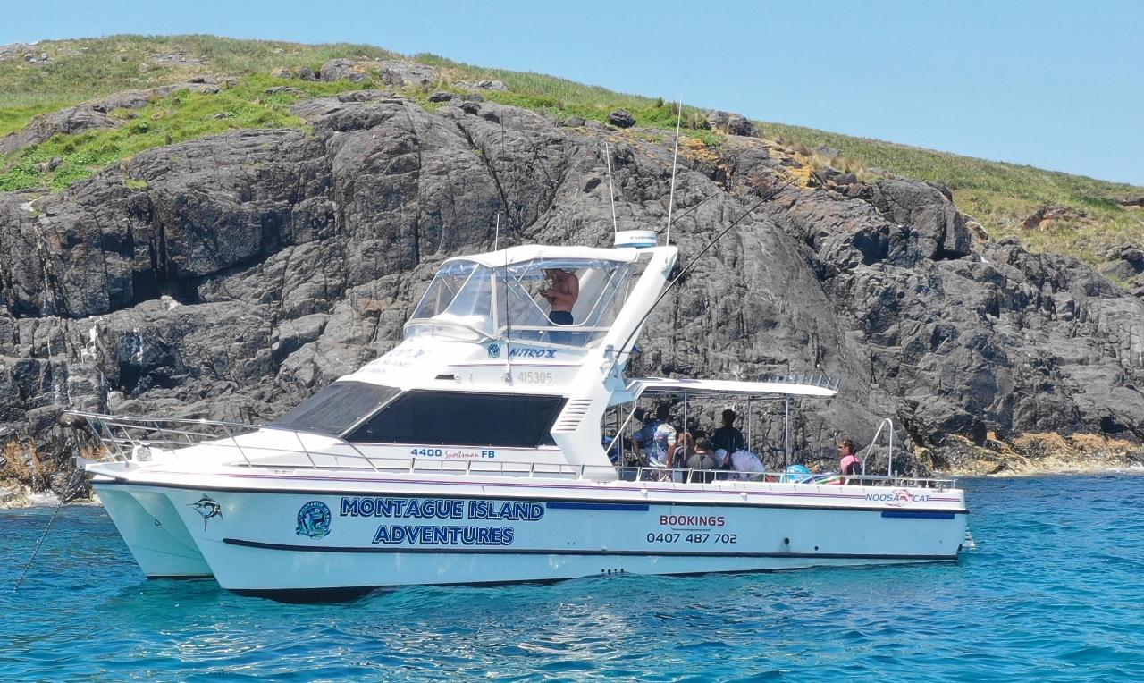 Afternoon Reef Fishing Charter Private Nitro