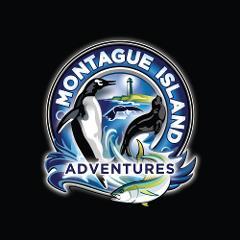 Montague Island Tour Morning Gift Card