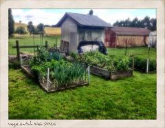 Paddock to Plate Farm Experience Group Tour at Twisted Willows Farm