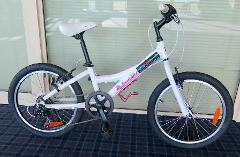 "1/2 day hire for 20"" children's bike (up to 3 hours)"