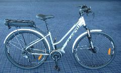 1/2 day hire for small to medium E-bike ( up to 3 hours)