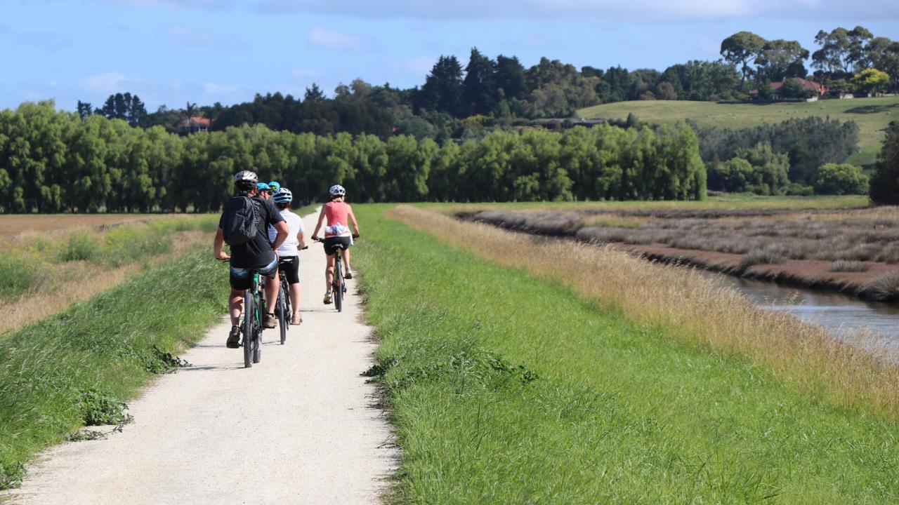 Ahuriri to Taradale Wineries Loop– half or full day options (15-50km)