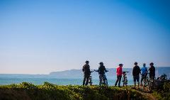 Cape Coast Winery Ride (16 km, 6 wineries)