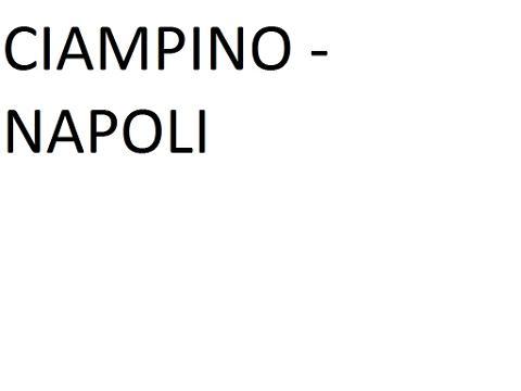 CIAMPINO AIRPORT --> NAPOLI (Metropark Corso A. Lucci)