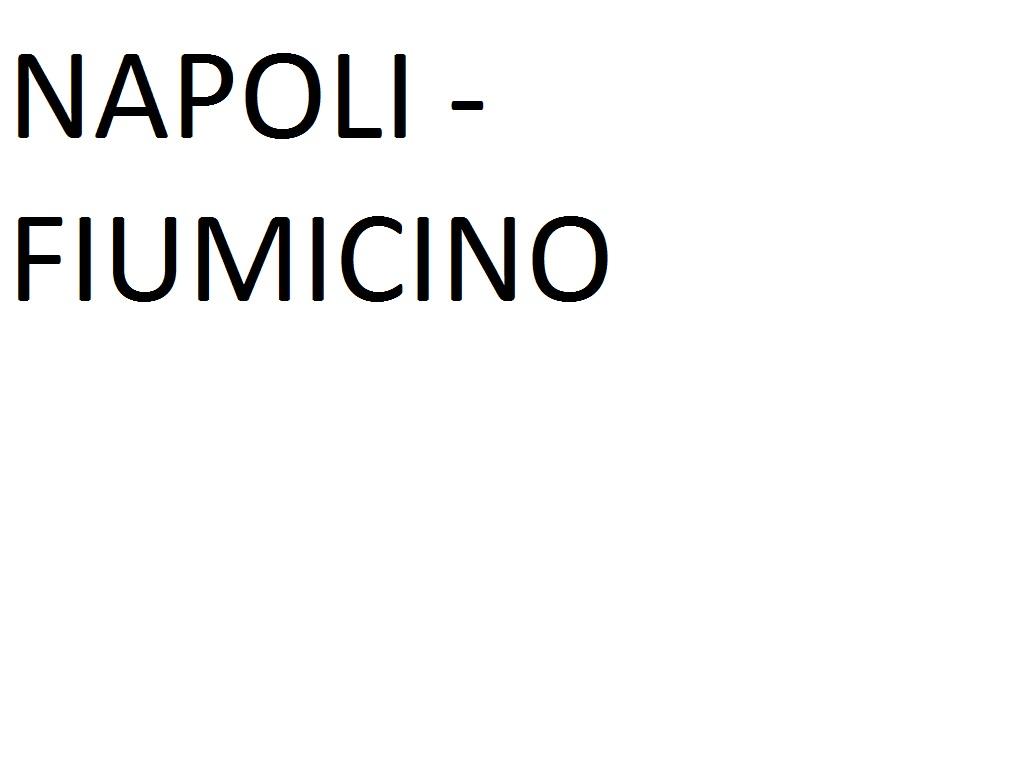 NAPLES (Metropark Corso A. Lucci)  --> FIUMICINO AIRPORT (Terminal 3)