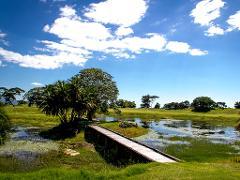 Mutare → Nyanga National Park