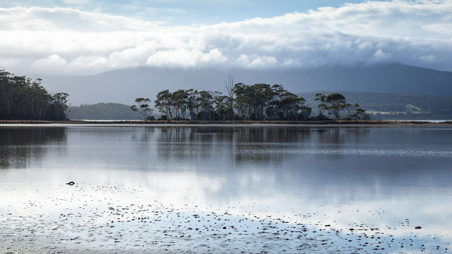 Bruny Island - photo-oriented private day tour  (CLASSIC)