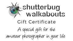 Gift Certificate - Private Photography Tuition (1/2 day)