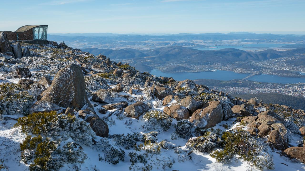 Private Photo-oriented Day Tour from Hobart - Mountain and Wildlife (Mt Wellington and Bonorong Wildlife Sanctuary)