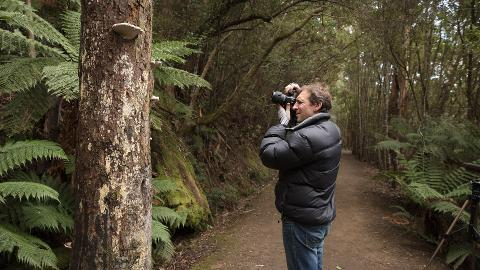 Mountain & Wildlife – photo-oriented private day tour Tasmania Australia