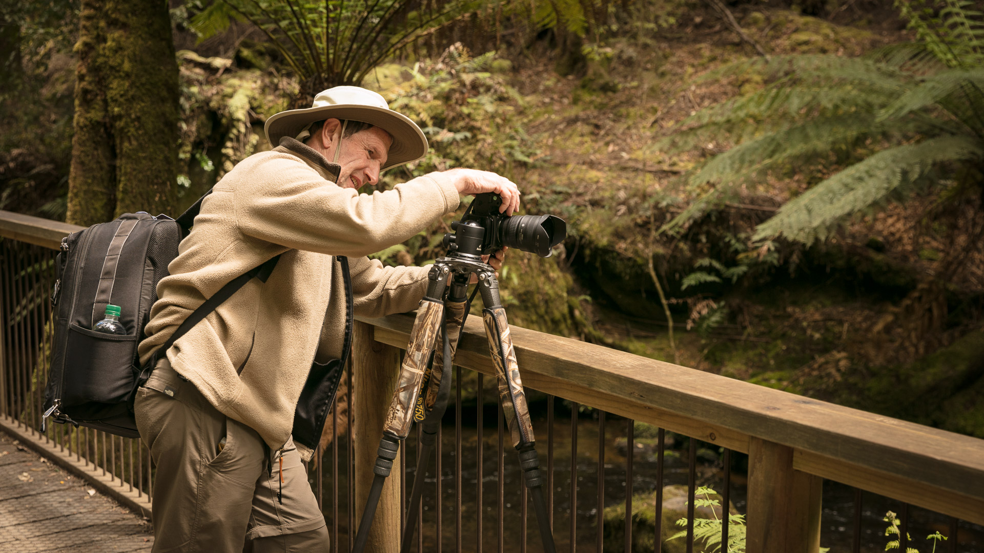 PREMIUM Mt Field National Park & Russell Falls - photo-oriented private day tour (all-inclusive)