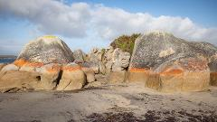 Women-only Photography Escape - Flinders Island