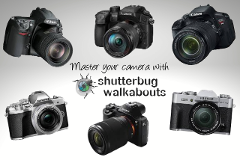 Private Photography Tuition - Master Your Camera Tutorial (1-hour)