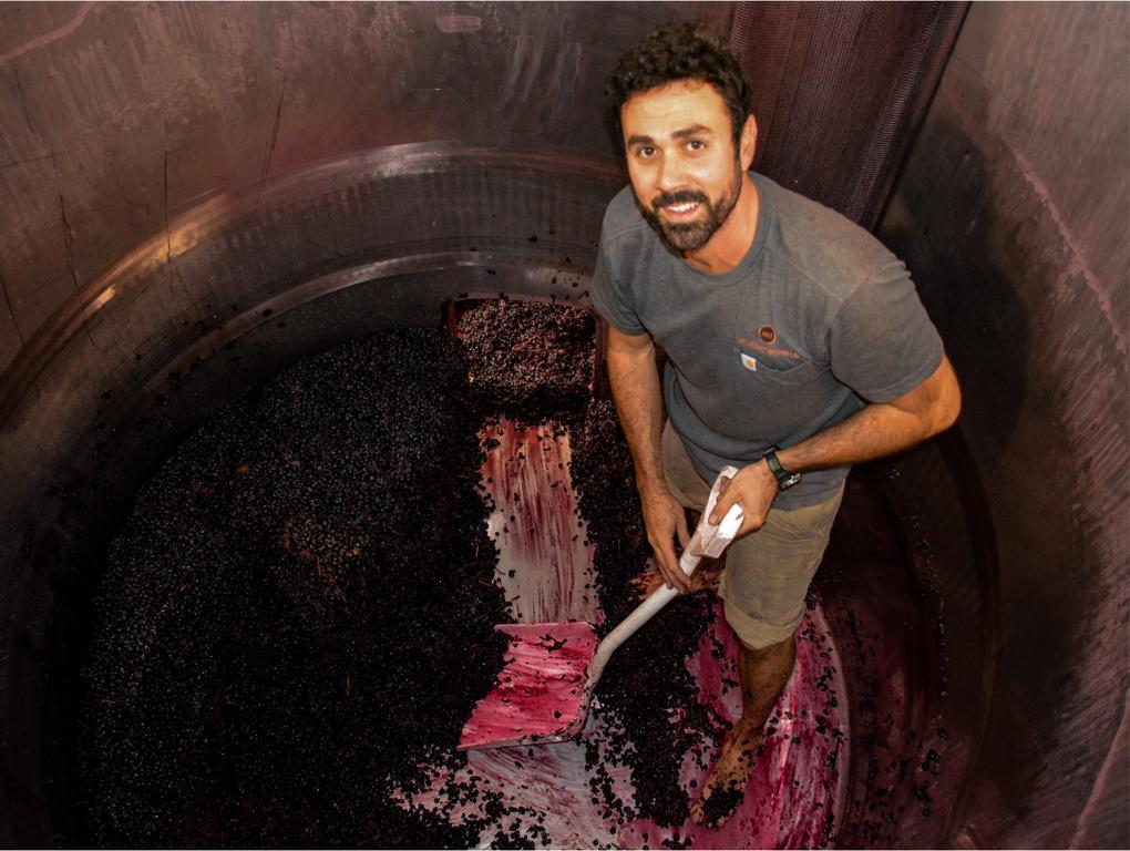 Premium Vineyard Wine & Food Tour