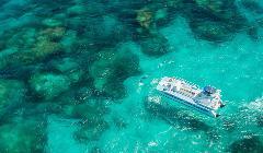 Rottnest Island: Ship Wrecks & Coral Viewing Tour