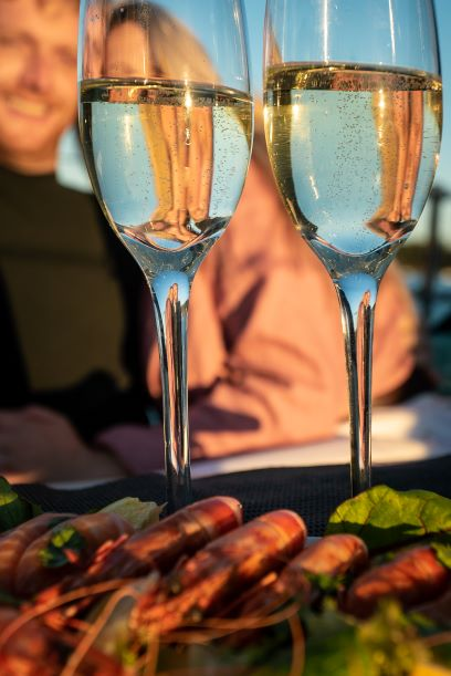 Romantic Sunset Cruise with French Champagne & Gourmet picnic dinner (4 hours) (YACHT)