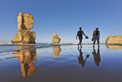 Great Ocean Road Tour - 12 apostles tour - Private Day tour