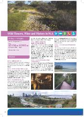 10.Wild Flowers Wine and History in WA All Inclusive Tour for Seniors