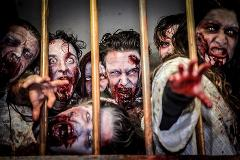 Public Session: Zombie Laser Tag